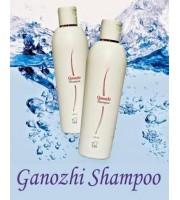 Dxn Ganozhi,Shampoo With Ganoderma & Vitamin B5,Mob 0568316841